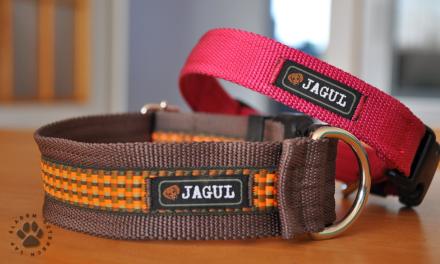 Obroże i smycze firmy Jagul